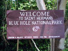 Blue Hole National Park   Discover Belize Travel Magazine   Discover Belize Travel Magazine