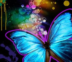 Wallpapers Butterfly For All Phone Types Free - HD Wallpapers , Picture ,Background ,Photos ,Image - Free HQ Wallpaper - HD Wallpaper PC Butterfly Background, Butterfly Wallpaper, Wallpaper Pc, Butterfly Flowers, Cellphone Wallpaper, Colorful Wallpaper, Beautiful Butterflies, Wallpaper Backgrounds, Blue Butterfly