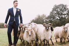 Wat zegt meer boerderij bruiloft dan schapen drijven? Foto: Fotografie door Lianne