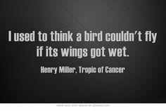 I used to think a bird couldn't fly if its wings got wet. ― Henry Miller, Tropic of Cancer