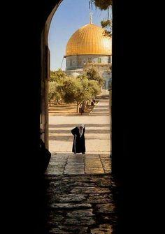 Dome of the Rock Jerusalem,Palestine Beautiful Mosques, Beautiful Places, Palestine Art, Dome Of The Rock, Arabic Memes, Religion, Islamic Girl, Amazing Buildings, Islamic Pictures