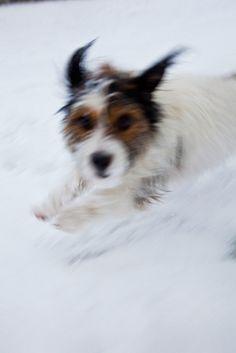 dashing thru the snow....