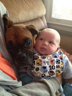 Boxer And Baby, Boxer Love, Baby Dogs, Doggies, Cute Puppies, Cute Dogs, Funny Boxer Puppies, Boxers, Cute Baby Animals