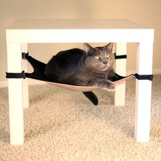 Cat Hammock - w/ link to printable PDF pattern. Made one of these for under the coffee table. Completely ruins the table (we drilled into the legs), so find a different way if you happen to love your table! Ours is old and cheap, so I didn't care at all. Diy Cat Toys, Pet Toys, Diy Cat Hammock, Cat Hacks, Jolie Photo, Diy Stuffed Animals, Crazy Cats, Cool Cats, Cats And Kittens