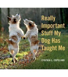 Cynthia L. Copeland Stuff My Dog Has Taught Me Book