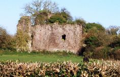 Ruins of Canonsleigh, where a manuscript of the Ancrene Wisse was kept during the Visit Devon, Writers, Monument Valley, Texts, Places, Travel, Life, Women, Viajes