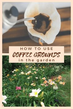 Don't toss those coffee grounds, used coffee grounds can be put to use in your garden in 14 different ways that will help your garden & the planet. Coffee Grounds Garden, Uses For Coffee Grounds, Garden Coffee, Garden Shop, Garden Art, Garden Tools, Urban Composting, Acid Loving Plants, Pulling Weeds