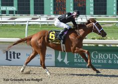 I'm A Chatterbox Takes Command In Fair Grounds Oaks   Paulick Report – Thoroughbred Horse Racing News