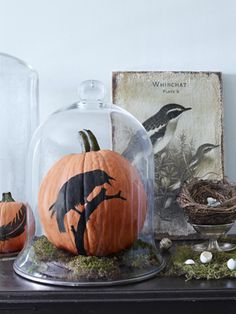 Learn how to make a no-carve raven Halloween pumpkin.