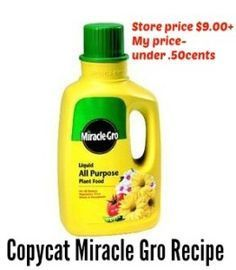 Copycat Miracle Gro Recipe - So they say! Ingredients:  1 gallon of water 1/2 tsp ammonia 1 tsp baking soda 1 tbsp powdered milk 1 tbsp Epsom salt