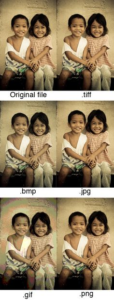 Did you know there are in total five image file types on the web? These formats are JPEG, PNG, GIF and..
