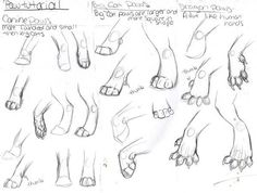 324388 Cat Paw Drawing, Furry Drawing, Drawing Art, Animal Sketches, Animal Drawings, Art Sketches, Horse Drawings, Warrior Cat Drawings, Warrior Cats Art