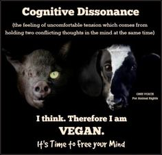 cognitive dissonance vegan - Google Search