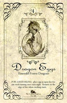 dragon egg lable