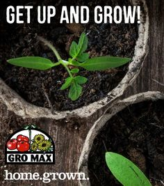 Lawn and garden tips from our local pals at Gro Max in Hudson NY! Garden Tips, Lawn And Garden, Get Up And Grow, Potting Soil, Plants, Gardening, Plant, Planets, Horticulture