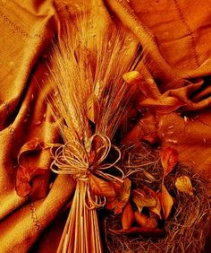 Grunge wheat background with autumn leaves White Magic Spells, Fall Fireplace, Healing Spells, Mabon, Lesbian Love, Love Spells, Pantone Color, Orange Color, Orange Peel