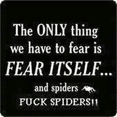 And snakes, and mice, and lizards...