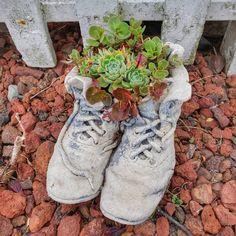 Old Shoes Concrete Succulent Garden Planter Diy Concrete Planters, Herb Planters, Concrete Crafts, Concrete Art, Concrete Garden, Concrete Projects, Zen Rock Garden, Rock Garden Design, Succulents Garden