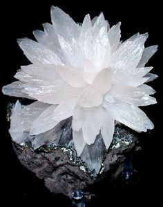 "Calcite~ ""The Stone of Light"" in a beautiful starburst formation. Calcite is a mineral formation that has traditionally been used for healing and other spiritual uses. It is a clean and vibrant gemstone that creates brilliant and beautiful gem formations. Minerals And Gemstones, Rocks And Minerals, Rock Collection, Beautiful Rocks, Mineral Stone, Rocks And Gems, Healing Stones, Healing Crystals, Stones And Crystals"