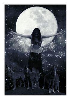 Full Moon & Stars & Wolves