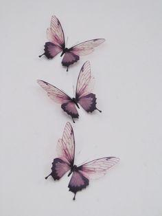 3 Luxus erstaunliche Flug Schmetterlinge 3D von MyButterflyLove
