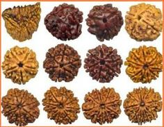 Different Types of Rudraksha Beads