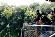 Victoria Falls BUNGEE! Victoria Falls, Africa, Wrestling, Sports, Lucha Libre, Hs Sports, Excercise, Sport, Exercise