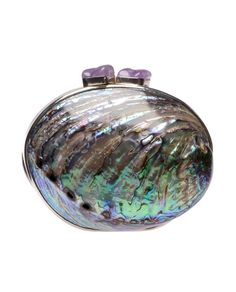 CELESTINA 'Maricel Soriano' large paua shell minaudière  www.bagebag.com
