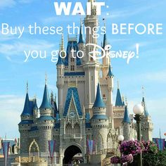 We LOVE Disney! We have taken our kids on the Disney Cruise, Disney World, Disney Land, we loved them all! We are not, however, fans of some of the prices of some of the items in the parks. It is no bargain to get into the park and they certainly don't give you any breaks once you …