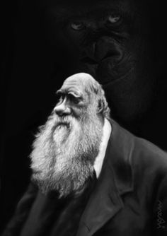Charles Darwin by Medi Belortaja