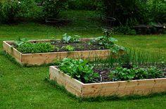 Come costruire un orto rialzato con cassoni (dove comprarli), mattoni o con materiale da recupero (pallet, cassette, contenitori...).