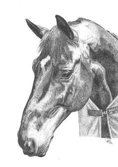 Faith Bailey Equestrian Art Work