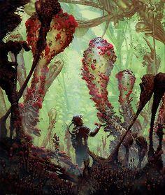 Arthur Haas (ekysphere) - CANDYKiD