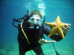 You are the Star underwater when you agree to give Scuba Diving a chance. Only in certain areas in Florida will you find the Cushion Star fish. My client was thrilled to be pictured with one and this can be you too. All you have to do is call and book an appointment for underwater joy and maximum pleasure, guaranteed or your money back.