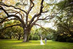 Our bride Christen featured on Wedding Row! Juliet Elizabeth Photography.