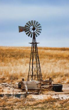Title  Prairie Sentinel  Artist  Sylvia Thornton  Medium  Photograph - Photograph Digital