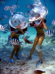Go for an underwater sea walk in Mauritius! (I went in Aruba, does that count? :3)