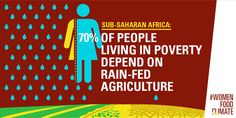 Sub-Saharan Govts must fulfil commitments to raise spending on #agriculture http://oxf.am/ZPy3  #WomenFoodClimate