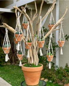 cute is this succulent tree? 💚😍 - - How cute is this succulent tree? 💚😍 – -How cute is this succulent tree? 💚😍 - - How cute is this succulent tree? Garden Crafts, Garden Projects, Garden Art, Cacti Garden, Succulent Gardening, Macrame Art, Macrame Projects, House Plants Decor, Plant Decor