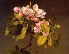 petitpoulailler:  poboh: 1870Martin Johnson Heade (American, Hudson River School, 1819-1904) ~ Spray ofApple Blossoms