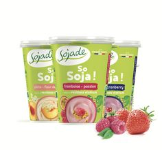 Sojade on Packaging of the World - Creative Package Design Gallery