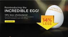 Incredible Edible Egg | Eggs | Egg Recipes, Egg Nutrition & Egg Facts