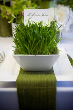 Wheatgrass is perfect for spring wedding décor because it's fresh, perfect for décor and very budget-friendly – you can grow as much as you need yourself. Wheatgrass can become a cool, natural and modern centerpiece, favor. Spring Wedding Decorations, Spring Weddings, Menu, Wheat Grass, Trendy Wedding, Wedding Ideas, Wedding Inspiration, Tablescapes, Centerpieces
