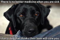 Best medicine in the world..