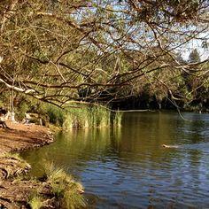 Lake Anza, Berkeley, California