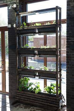 Fonsterodling Mkb Home Hydroponics, Aquaponics, Garden Farm, Farm Gardens, Vertical Farming, Ladder Bookcase, Nest, Outdoors, Design