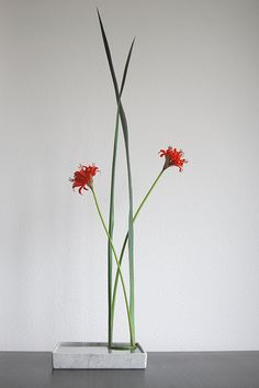 #ikebana #Japanese #flowers