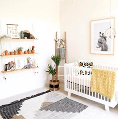 babyletto on Instagram: #nurserygoals right here!!  that DIY hanging shelf is too good  • #babyletto Hudson crib • : designed by mama Kaila Walls