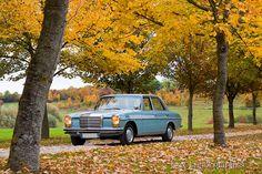 Mercedes Benz W114 250 1969