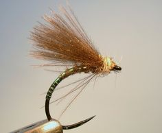 'DW Fly Fishing & Tying':  Pursuing the UK's wild trout and grayling with the fly